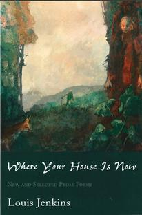 Where Your House is Now - book cover