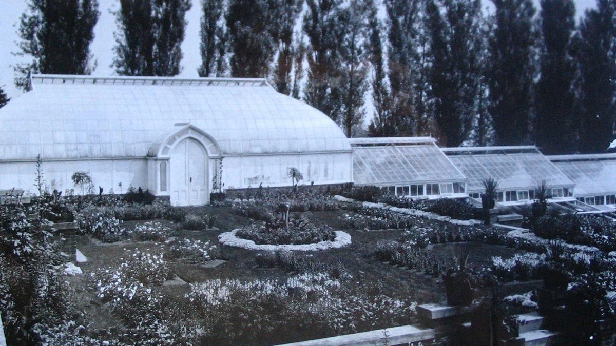 a historic photograph from 1920 of Glensheen Estate's greenhouse and gardens